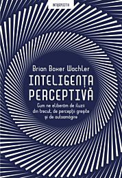 Inteligenta perceptiva