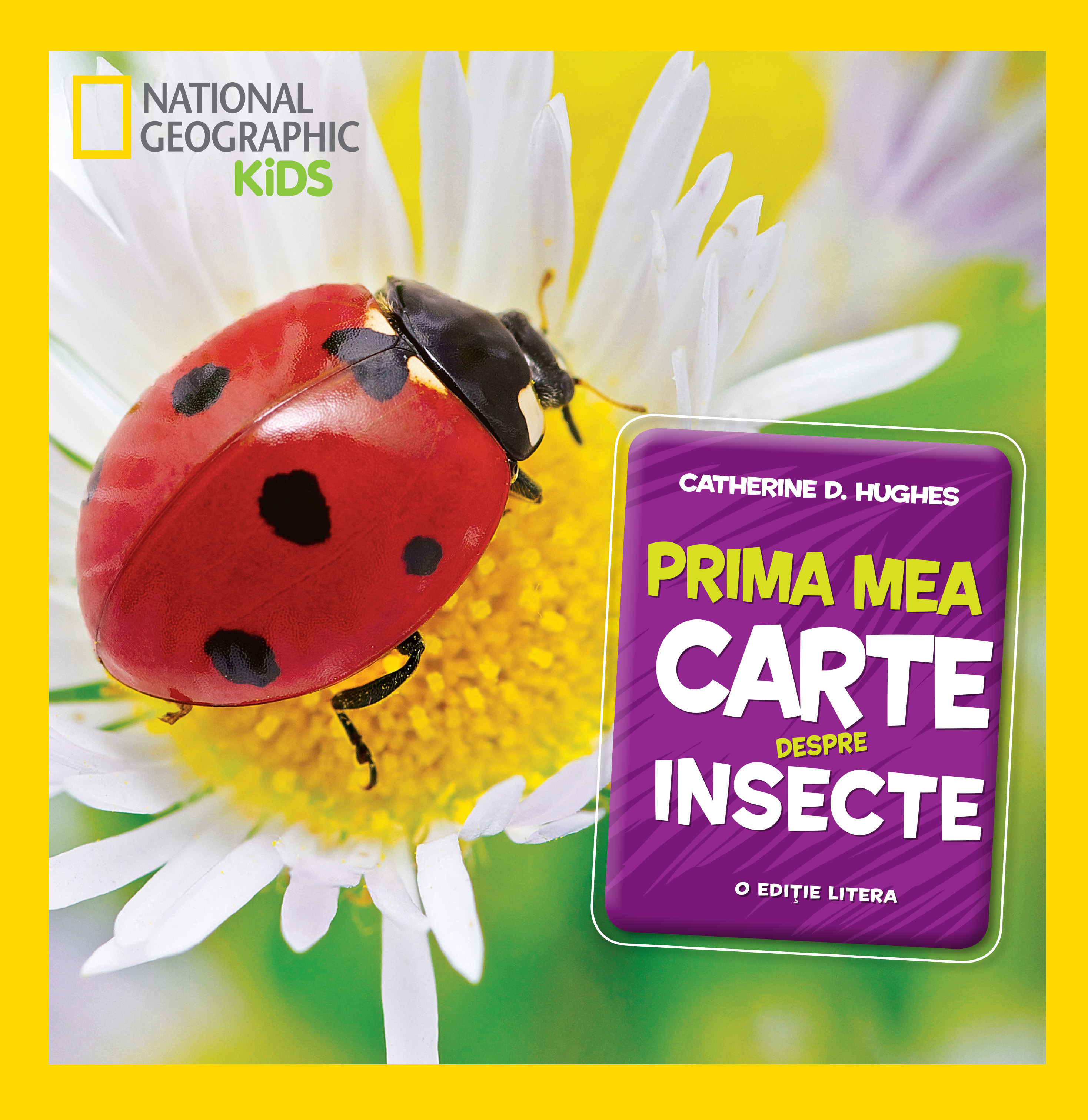 Prima mea carte despre insecte imagine 2021
